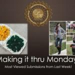 """""""Making it thru Monday"""" Review #17"""