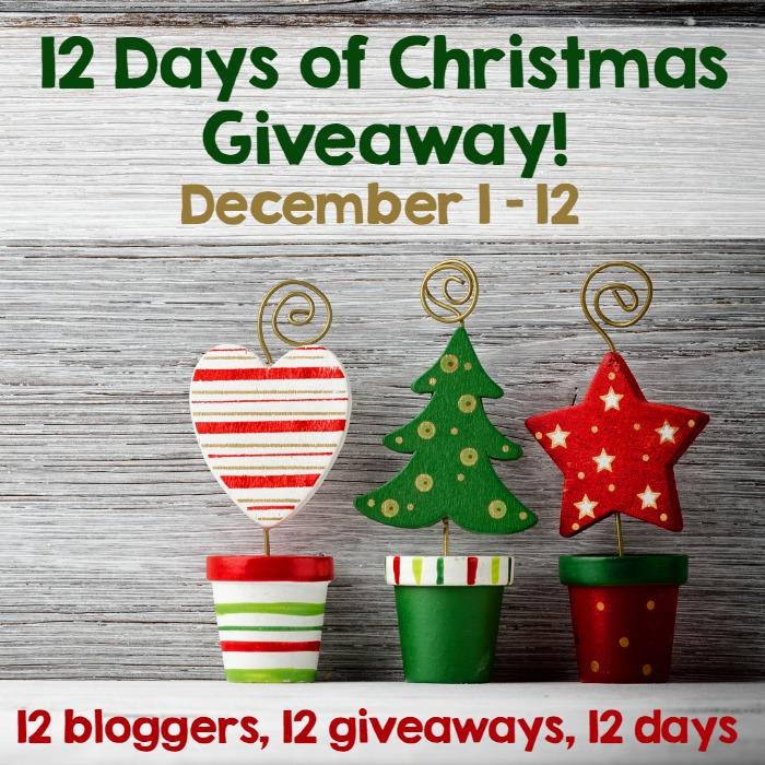 Ellentv com 12 days of christmas giveaway