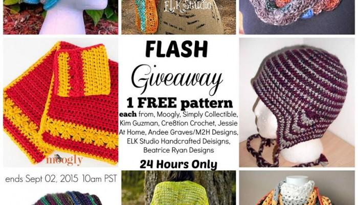 Flash blog Hop 24 hr Giveaway